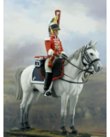 NF6005-01 Trumpeter 1 Regiment  1810-1812 Painted