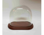 Glass Dome GD-A05 with Wooden base with filt under 20x11 Tall 18