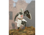 MK-004 Knight templar Painted